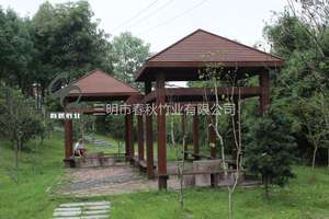 Consolidated Bamboo Pavilion